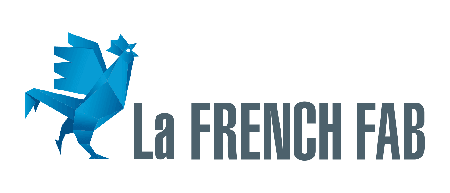 Focussia is a french semiconductor industry actor who supports the French Fab